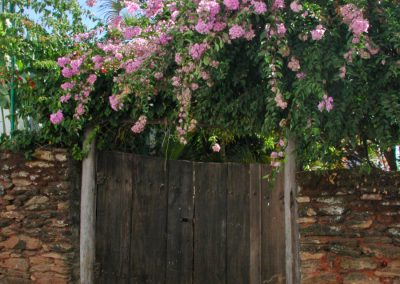 Old door with flowers
