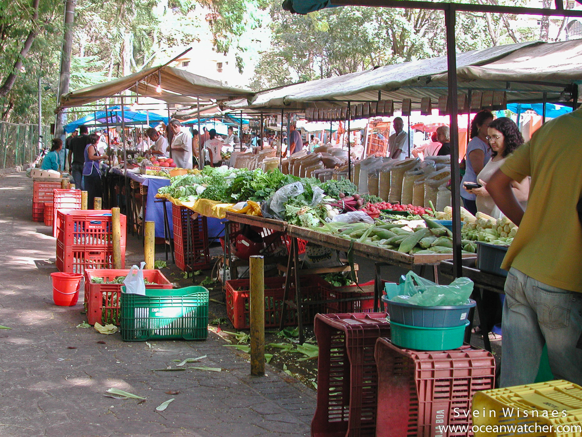 Photographing at markets - feiras 1