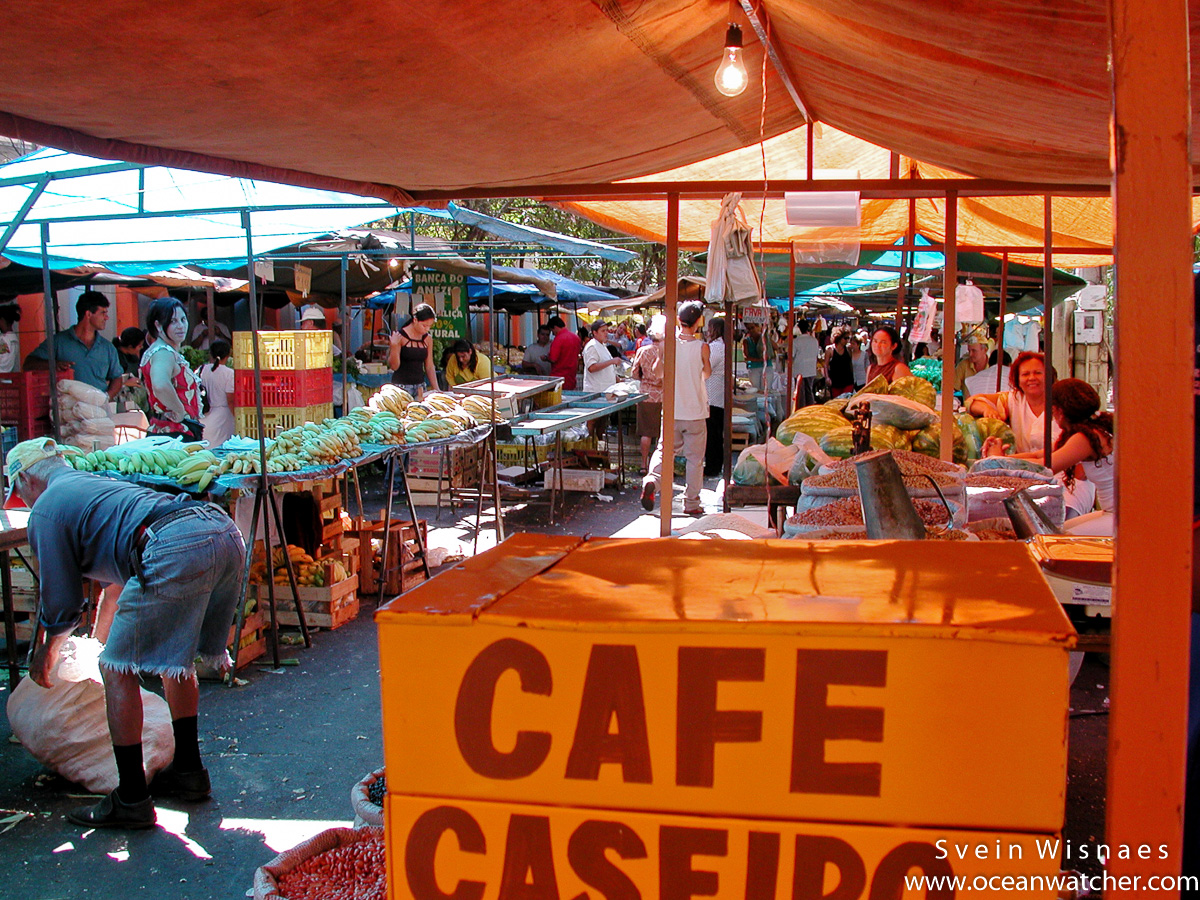 Photographing at markets - feiras 16
