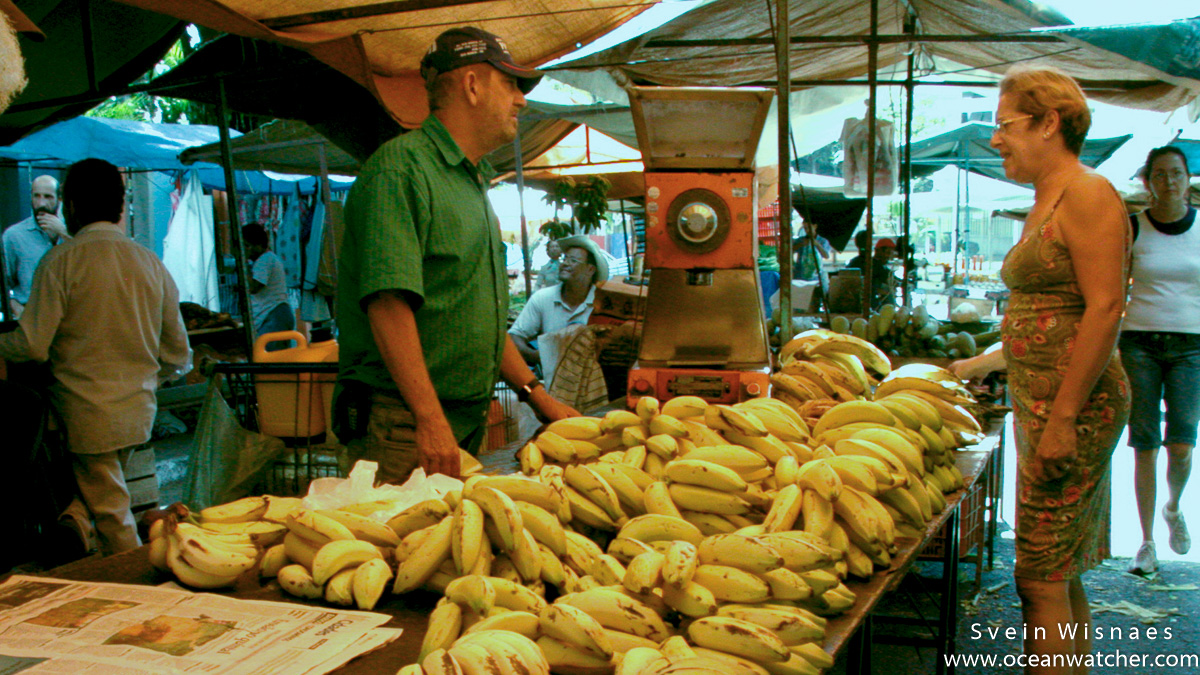 Photographing at markets - feiras 21