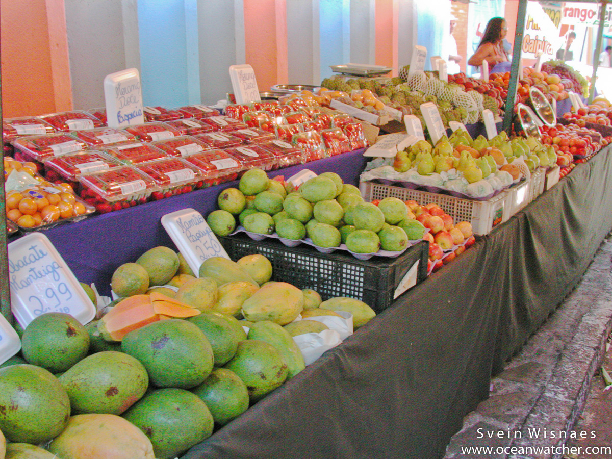 Photographing at markets - feiras 5