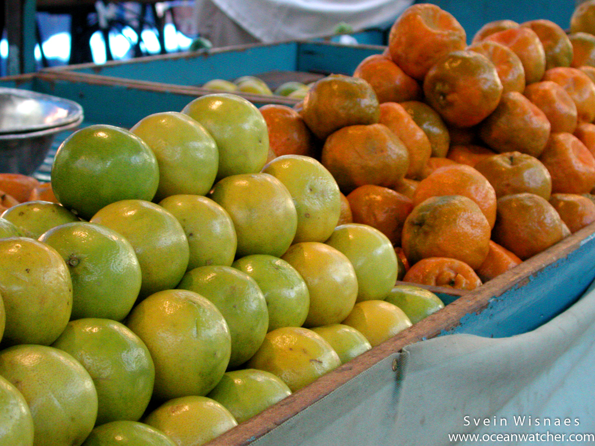 Photographing at markets - feiras 8