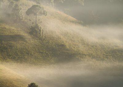 Sunrise in Delfim Moreira